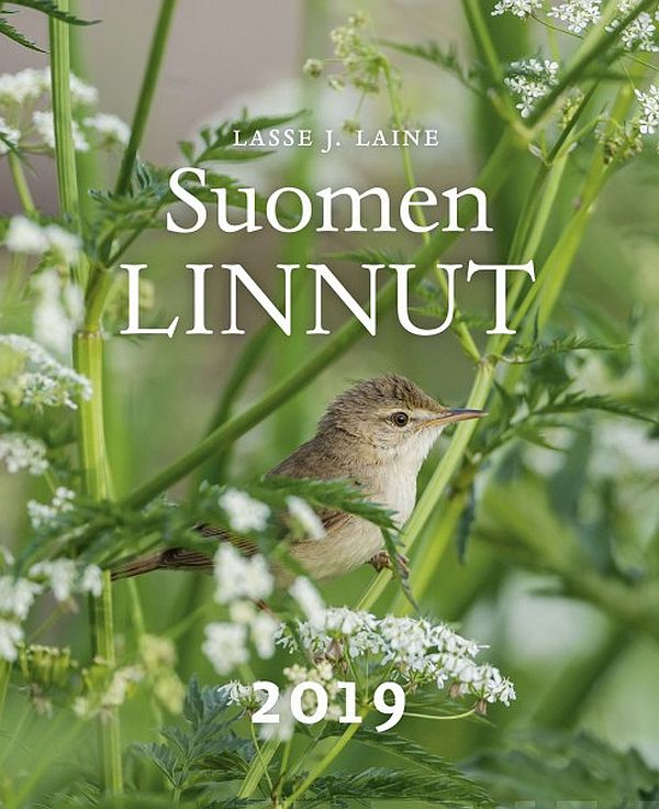 Image for Suomen linnut 2019 from Suomalainen.com