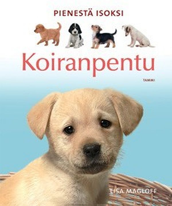 Image for Koiranpentu from Suomalainen.com
