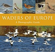 Image for Waders of Europe from Suomalainen.com