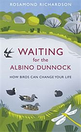 Image for Waiting for the Albino Dunnock from Suomalainen.com