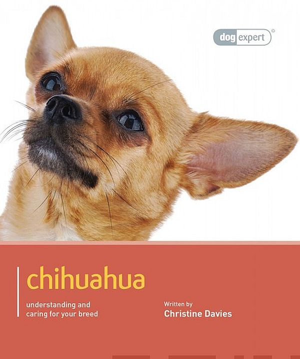 Image for Chihuahua from Suomalainen.com