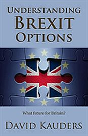 Image for Understanding Brexit Options from Suomalainen.com