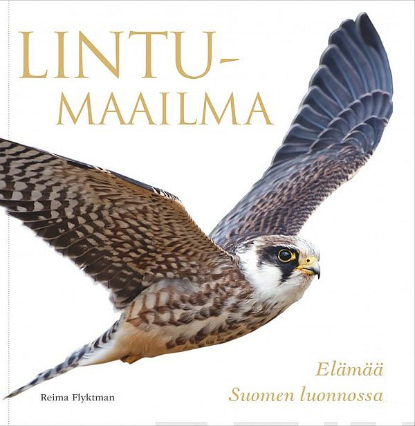 Image for Lintumaailma from Suomalainen.com